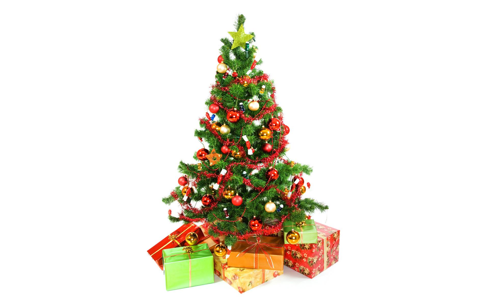 Новогодняя елка полезна для здоровья